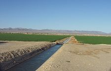 Fort Mohave Farmland